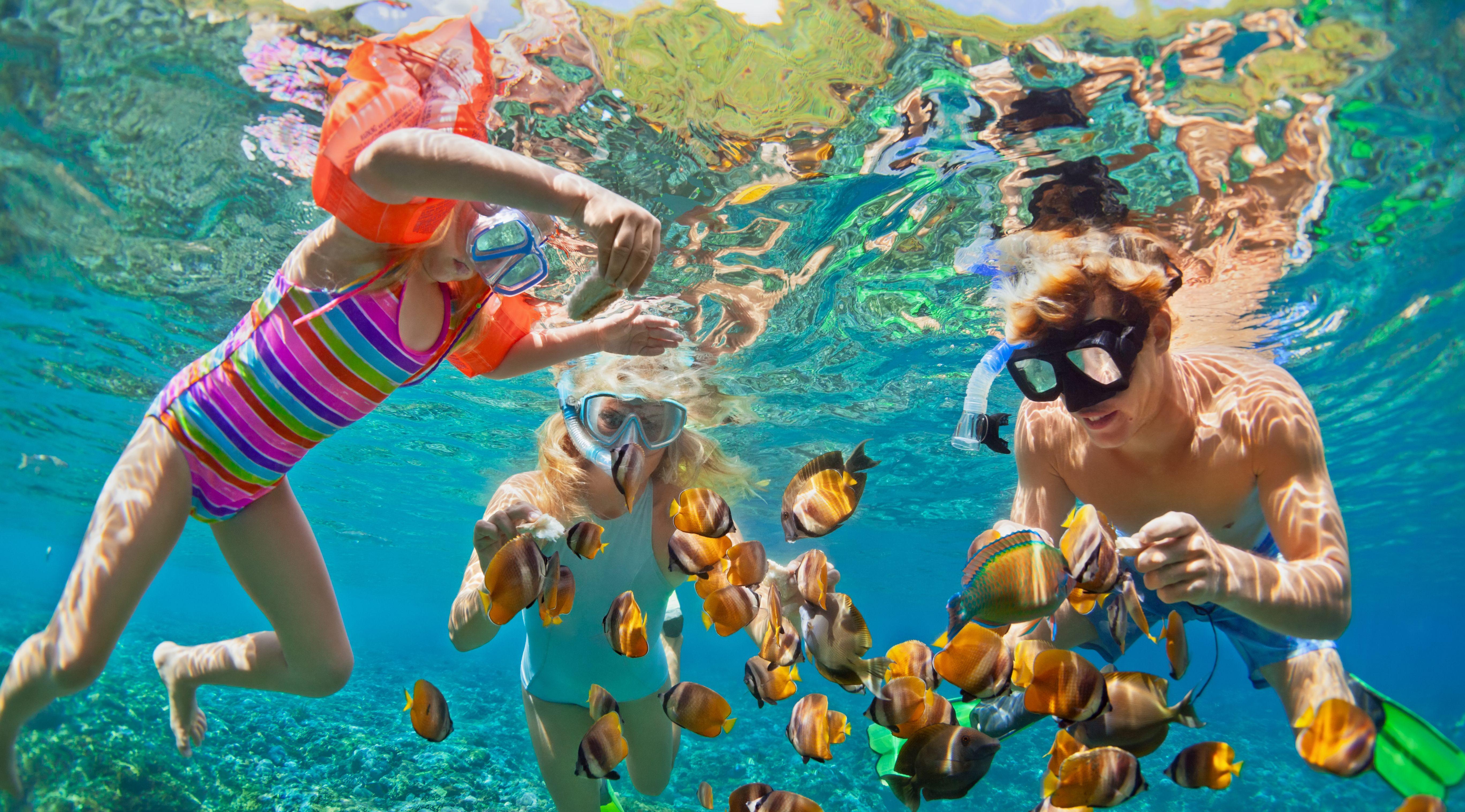Schnorcheln auf den Bahamas